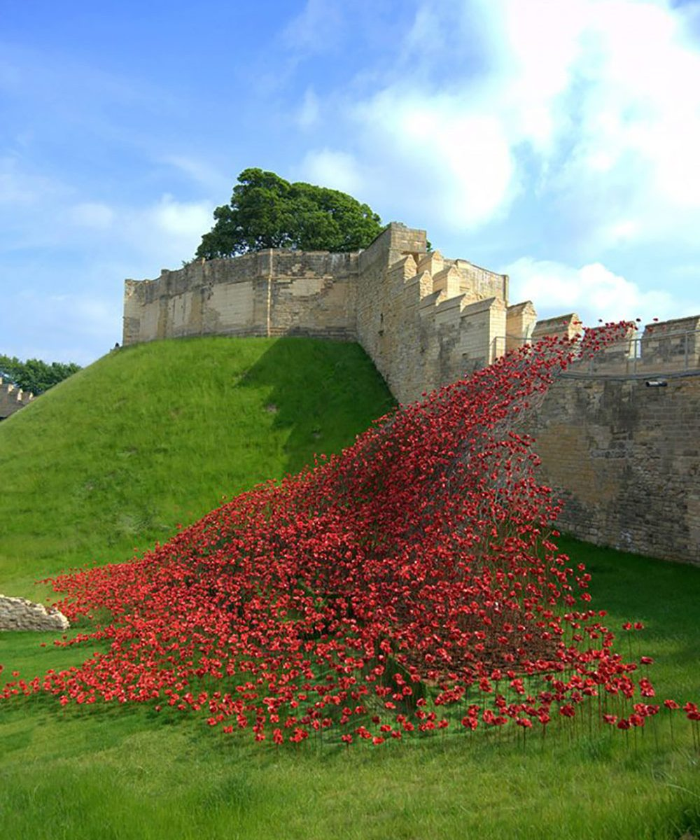 Poppies wave installation, 14-18 NOW